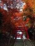 Inari_02.jpg